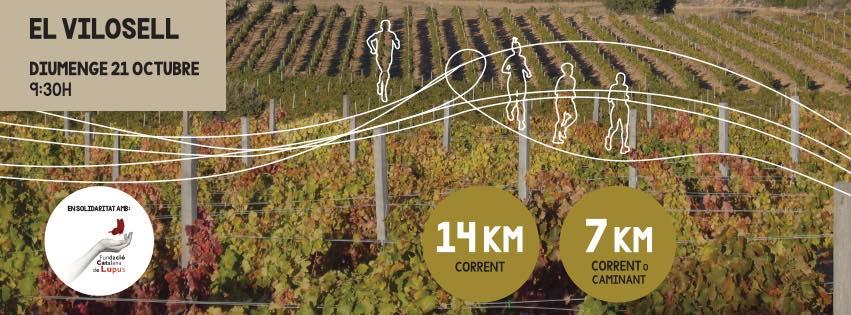 5a edició de la Cursa Entre Vinyes del celler Tomàs Cusiné